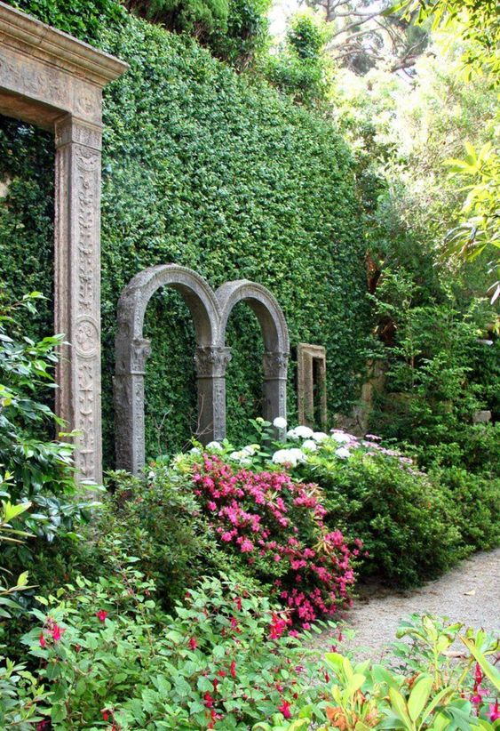 Check out these amazing living fences for your backyard.